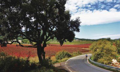 Cicloturismo Catalunya Aiguaviva