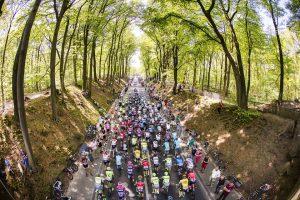 dosales ciclistas JoanSeguidor