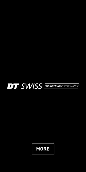 DT – Swiss SkyScrapper 2021 (300×600)